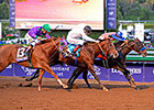Slideshow: 2014 Breeders' Cup Day 2