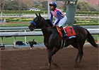 Breeders' Cup News Update for November 2, 2014