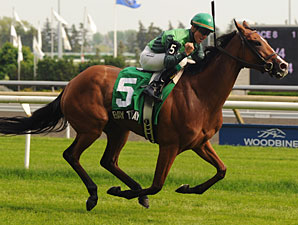 Bay to Bay Captures Soggy Nassau at Woodbine