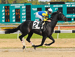 Beamer Maiden Win 12/30/10