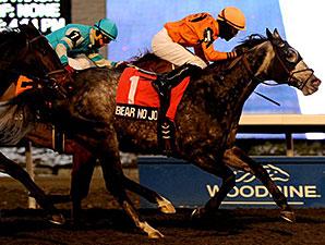 Bear No Joke wins the 2013 Kennedy Road Stakes.