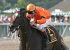 Bear Now Wires Cotillion Field, Octave Second