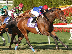 Graded Stakes Winner Bearpath Dies