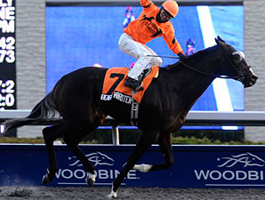 Bear's Hard Ten Romps in Display Stakes