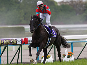 Beat Black Scores Major Upset in Tenno Sho