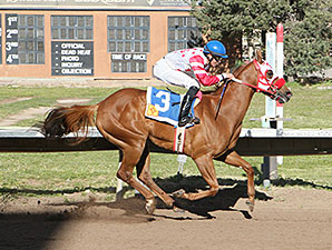 Beau Wizer wins the 2015 O.D. McDonald Stakes.