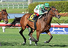 Beauty Parlor Wins U.S. Debut in Orchid