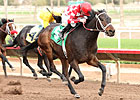 Beer Meister Brews Big Upset at Turf Paradise