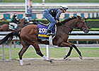 Baffert Horses, Beholder Top Oct. 28 Works