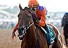 Mandella: Beholder 'One of the Greats'