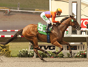 Beholder All Business in Torrey Pines Tuneup