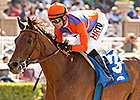 Beholder, Iotapa Lock Horns in Zenyatta