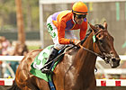 Beholder 'Questionable' for Del Mar Meet