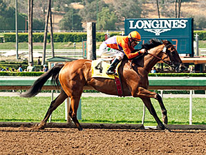 Beholder wins the 2015 Adoration Stakes.