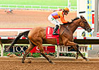 Beholder All Class in Easy Hirsch Score