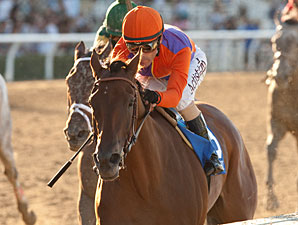 Beholder wins the 2013 Zenyatta.