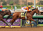 Beholder to Return in Santa Lucia Stakes