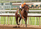 Beholder Posts Breeders' Cup Distaff Work