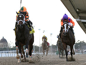 Believe You Can wins the 2012 Silverbulletday.