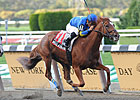 NY Stakes Winner Bellacourt Euthanized