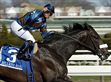 Bellamy Road to Miss Breeders' Cup; Will Race in 2006