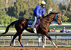 Santa Anita Return for Belle Gallantey