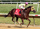Belle Gallantey Steals Delaware Handicap