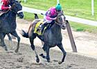 Denis of Cork, Others Exit Belmont Well