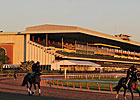 Belmont 38-Day Fall Meet Begins Sept. 5