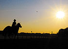Sun and Warmer Temps Forecast for Belmont Day