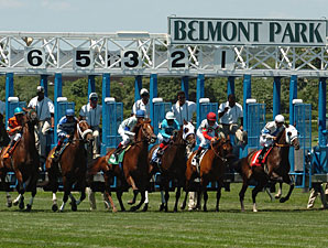Belmont Attributes Low Handle Figures to Rain
