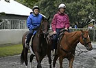 Belmont Stakes News Update for June 5, 2014
