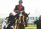 2014 Belmont Stakes Wrap