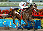 Dubai Sprint Sees American Favorites