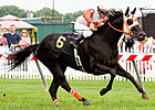 Ben&#39;s Cat Chases Maryland Million History