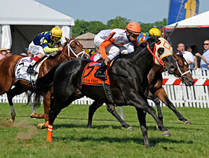 Ben's Cat wins the 2013 Jim McKay Turf Sprint.