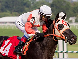 Ben's Cat wins the Mister Diz Stakes.