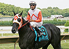 Ben's Cat Aims for Fourth Parx Dash Victory