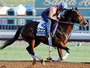Better Lucky - Breeders' Cup 2014