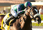 Big Bane Theory Stars in City of Hope Mile