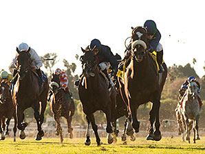 Big Bane Theory wins the 2014 City of Hope Stakes.