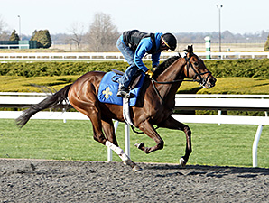 Big Bazinga's morning workout at Keeneland April 6.