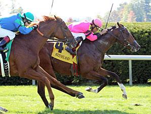 Big Blue Spirit - Maiden win, October 12, 2012.