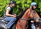 Big Brown on Track Again; Tomcito Works
