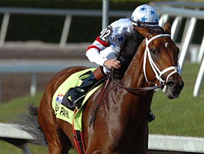 Big Brown Wins the Florida Derby.
