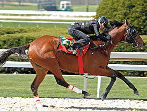 HRTV to Cover Keeneland Juvenile Sale