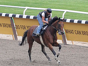 Big Brown galloping at Belmont Park June 6.