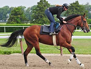 Big Brown, training at Belmont Park May 31.