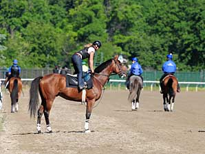 Big Brown training prior to the Belmont (gr. I).