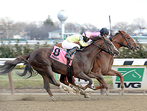 Big Business wins the 2014 Alex M. Robb Stakes.